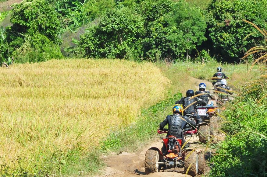 Tourists riding ATV