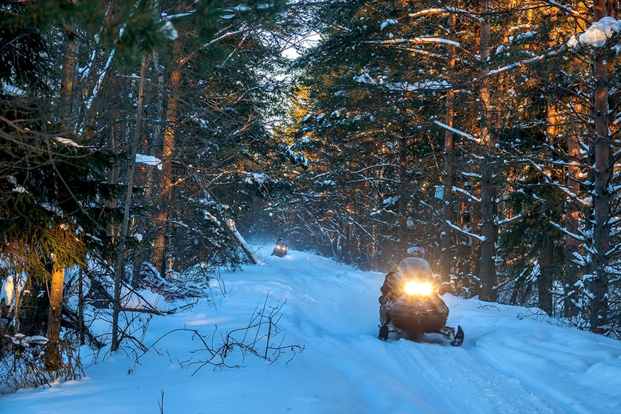 Snowmobiles travel on a winter forest road