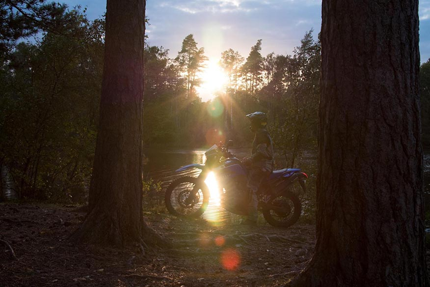 motorcycle in forest